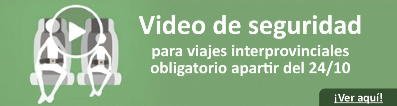 video seguridad